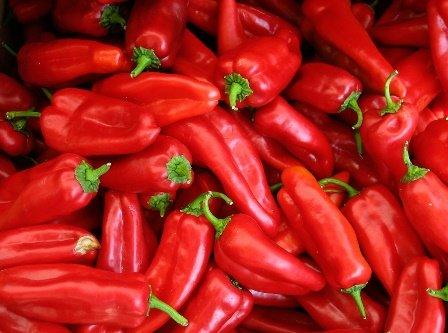 Paprika - Internationally remowded quality