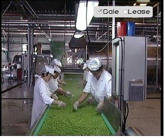 Factory for canning vegetables and fruits Prima Produkt Kikind