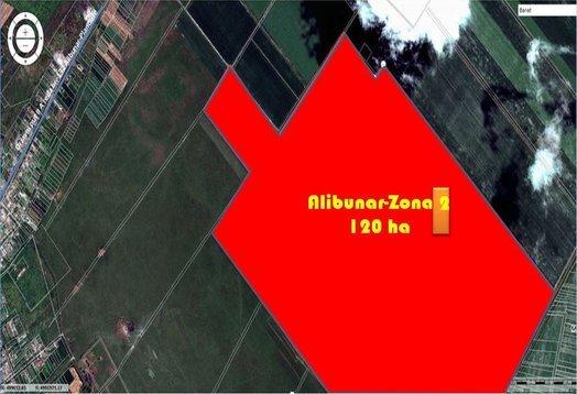 Alibunar Zone1